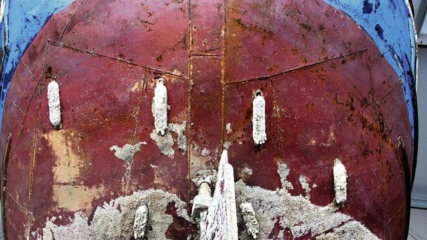 Geborgenes Flüchtlingsboot Meerestiere und Fäulnis ließen nur Skelette