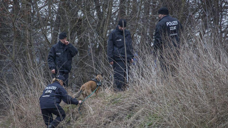 Polizeihund im Einsatz: Studie mit fragwürdigen Testergebnissen unterfüttert?