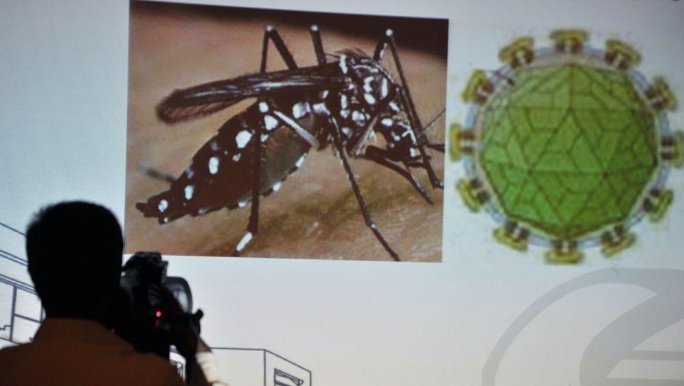 Zika-Einsatz in Brasilien: Im Häuserkampf gegen die Tigermücke