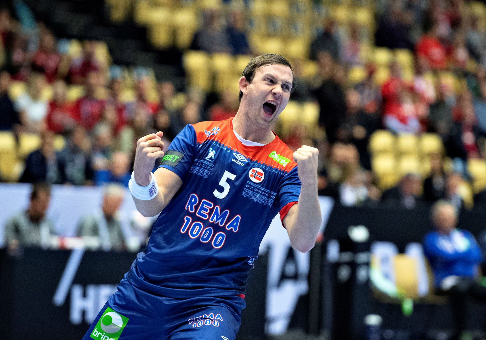 IHF Handball World Championship - Germany & Denmark 2019 - Group C - Norway v Austria