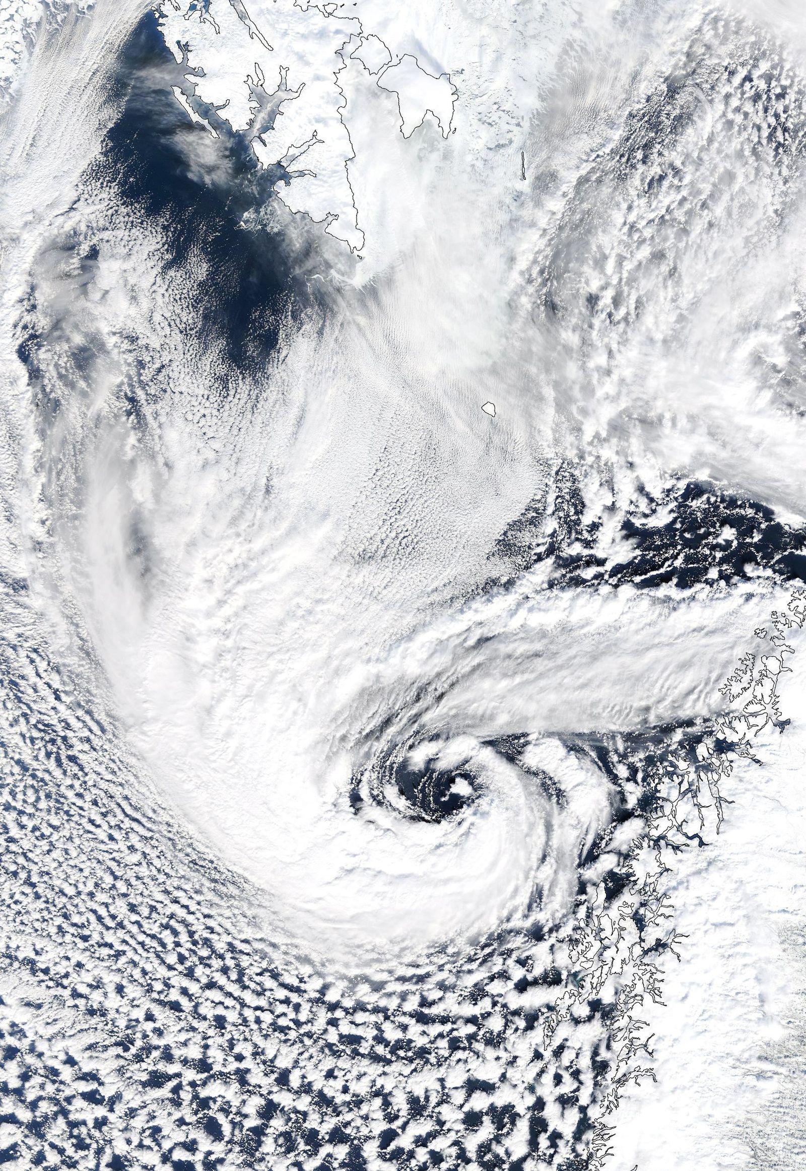 EINMALIGE VERWENDUNG Polarties / Sturm / WISSENSCHAFT