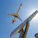 Passagierzahlen schon fast wieder auf Vor-Corona-Niveau