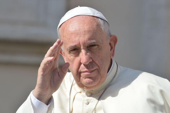 Papst Franziskus: Umwelt-Enzyklika vorgestellt