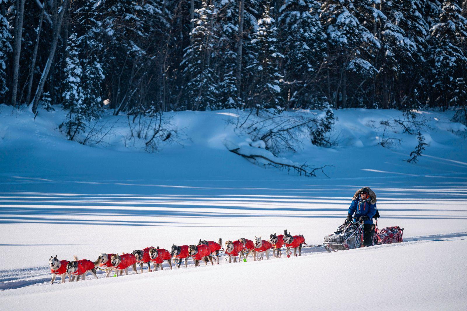 «Iditarod» - Schlittenhunderennen in Alaska