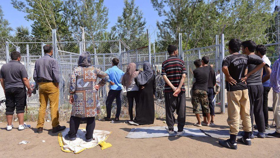 Einwanderer stehen im Mai 2016 an dem Grenzzaun zwischen Serbien und Ungarn