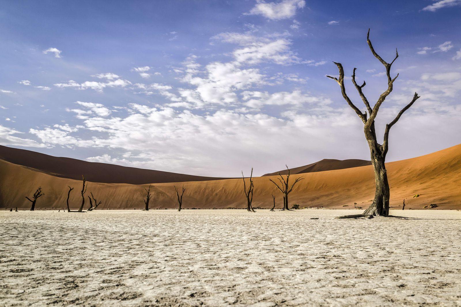 EINMALIGE VERWENDUNG Juni Ausflug/ Nambibia