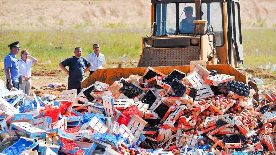 Vernichtung importierter Pfirsiche in Russland
