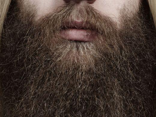Dauertrend Bart: Verseucht mit Bakterien?