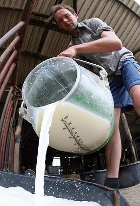 Bauernprotest: Molkereien müssen Produktion einstellen