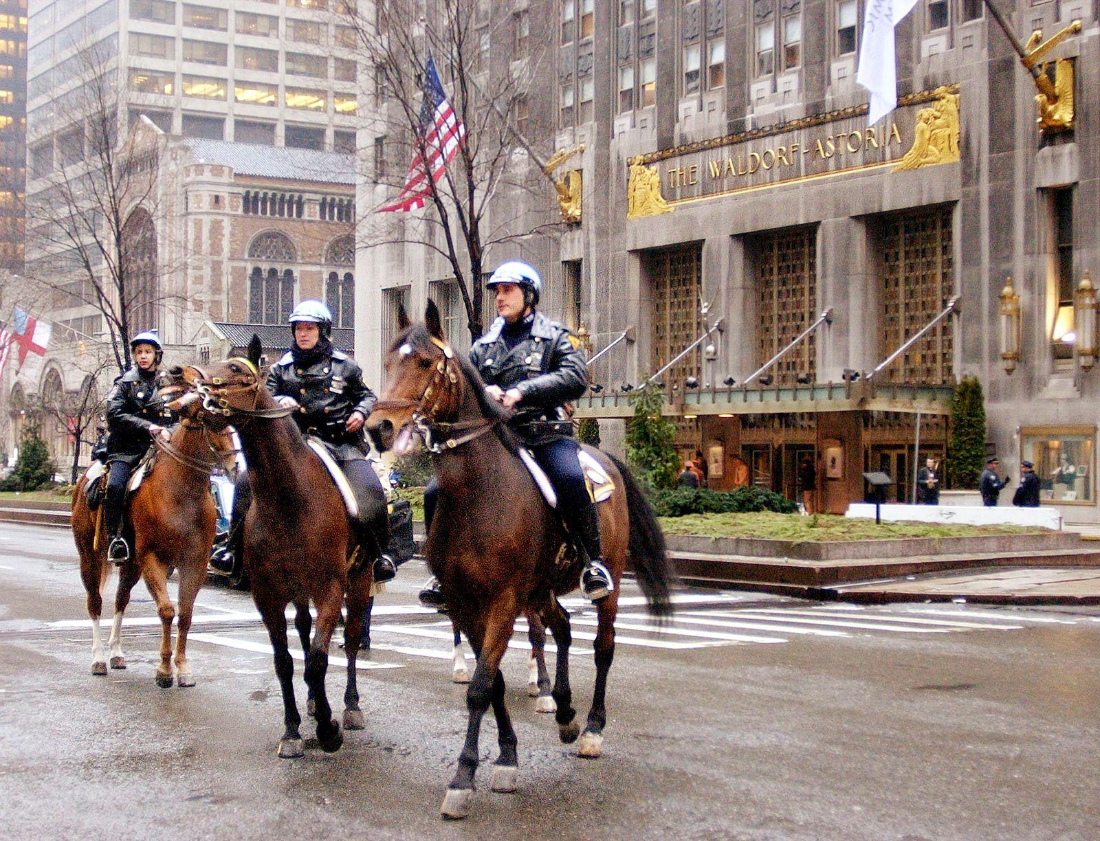 Waldorf Astoria Hotel / New York