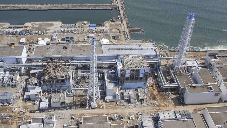 Havarierter Atommeiler Fukushima: Es gibt Katastrophen, die das Innere einer Gemeinschaft zerstören