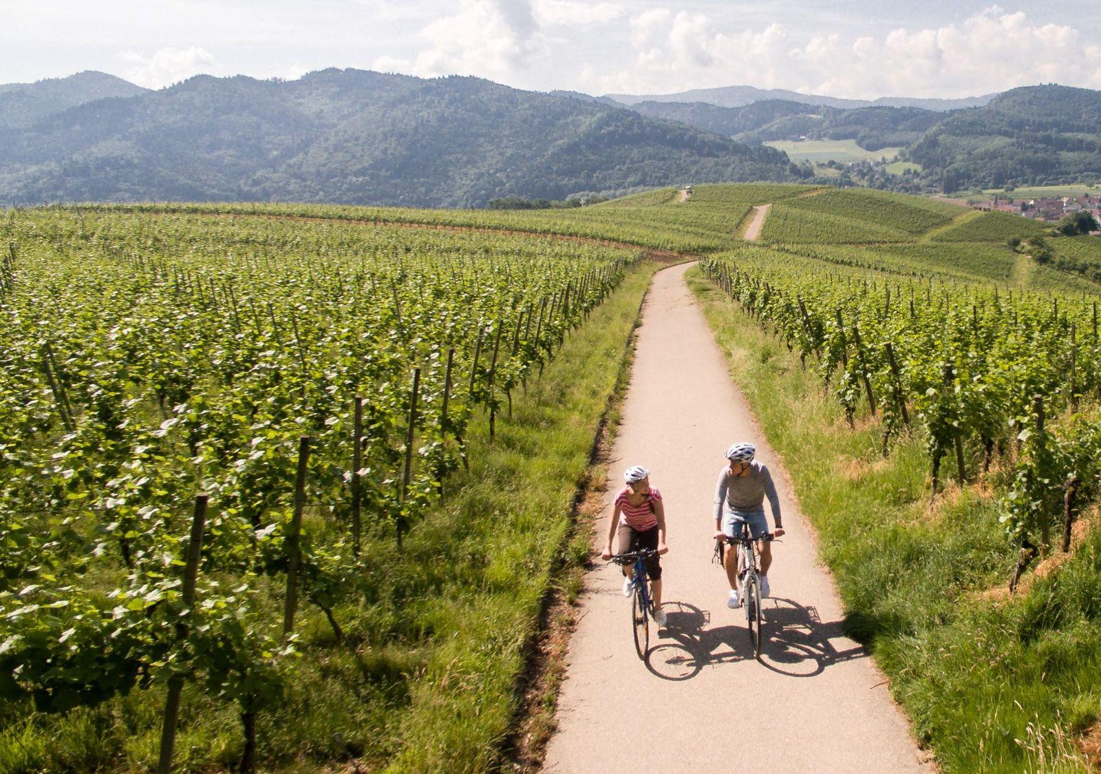 Durch+die+Weinlandschaften+(c)+Keller-Schwarzwald+Tourismus