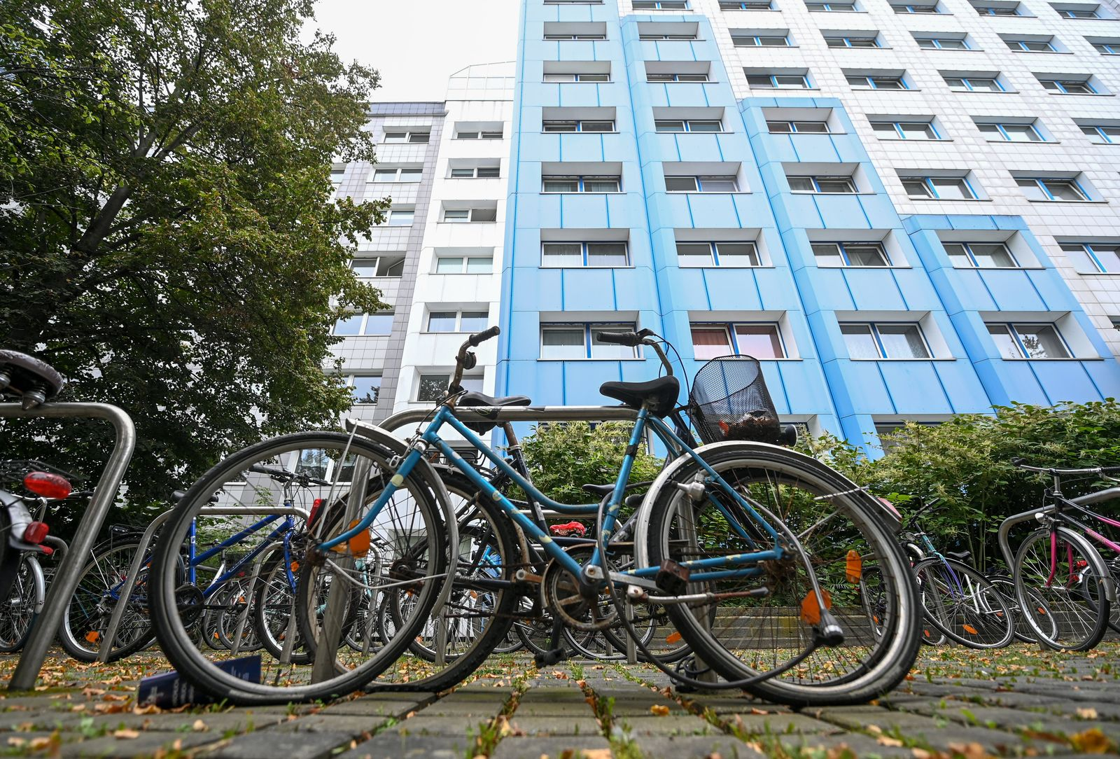 Wohnsituation von Studierenden in Deutschland