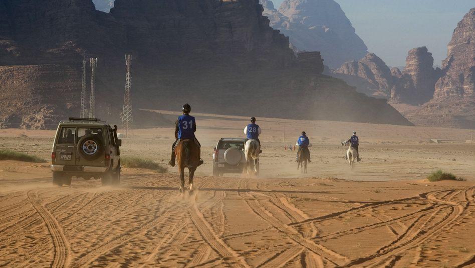 Bei Distanzrennen legen Pferd und Reiter extreme Entfernungen zurück, wie hier während eines Wettkampfs über 160 Kilometer in Jordanien