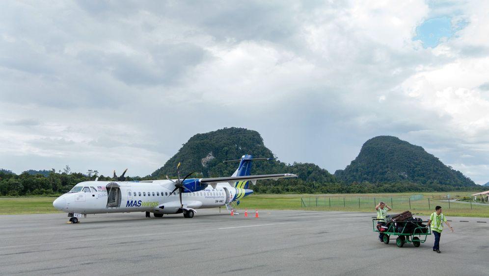 Mit Baby durch Borneo: Hohe Wipfel, hohe Höhlen