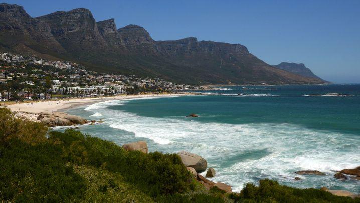 Alarmsystem in Südafrika: Die Hai-Beobachter von Kapstadt