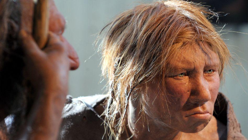 Nachbildung einer Neandertalerin im Museum in Mettmann: Ausgestorbene Verwandte