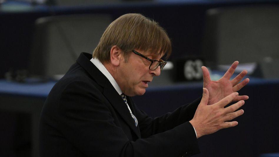 Der Brexit-Beauftragte des Europaparlaments, Guy Verhofstadt