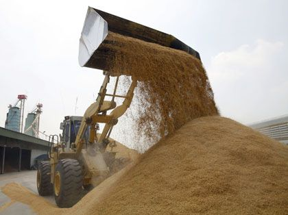 Reisverladung in Thailand: Mit acht Millionen Tonnen jährlich der weltgrößte Exporteur
