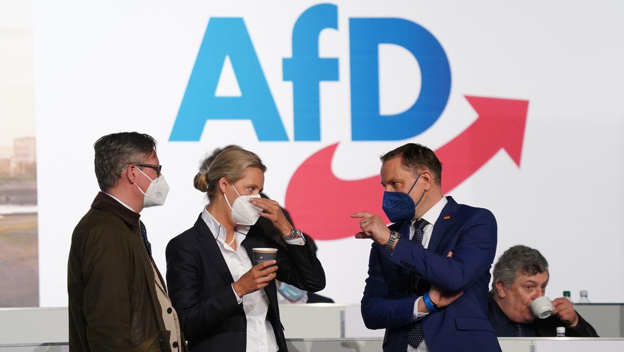 AfD: Alice Weidel und Tino Chrupalla wollen Spitzenkandidaten werden