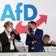 AfD will noch keine Spitzenkandidaten für Bundestagswahl bestimmen