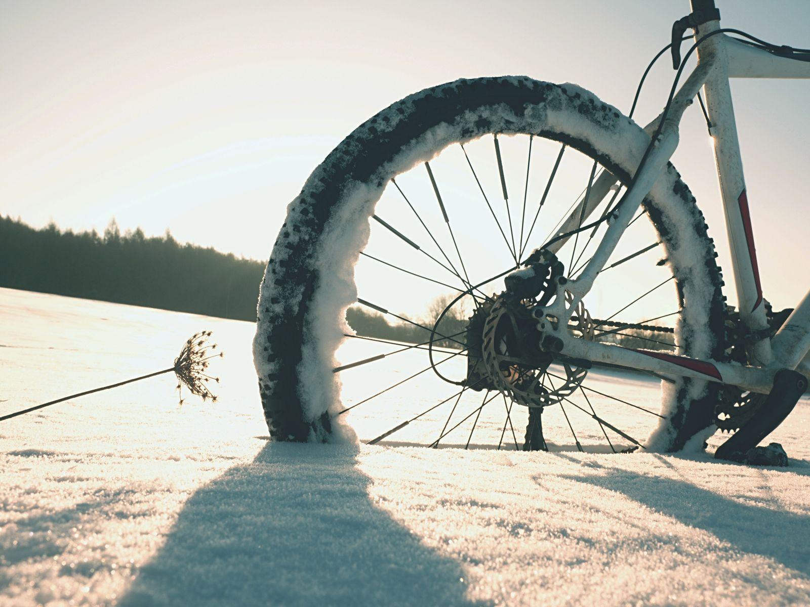 Mountain bike stay in powder snow. Lost path in deep snowdrift. Rear wheel detail. Snow flakes melting on dark off road tyre. Winter weather in the field. (rdonar)