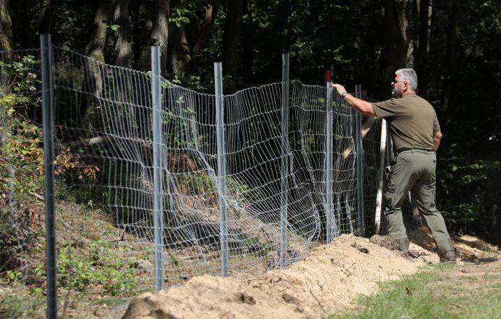 Wildschweinzaun an der Grenze zu Polen in Mecklenburg-Vorpommern