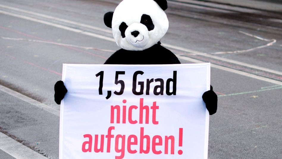 Aktivist bei Fridays-for-Future-Demonstration in Berlin