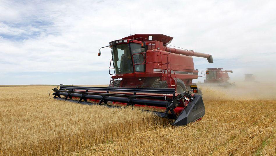 US-Landwirte bei der Ernte (Archivbild)