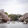 Japan meldet früheste Kirschblüte