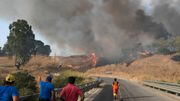 Menschen in Süditalien müssen vor Waldbränden fliehen