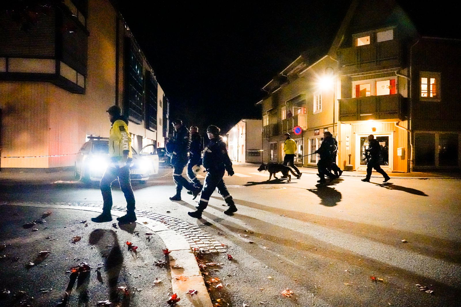 Police action in Kongsberg