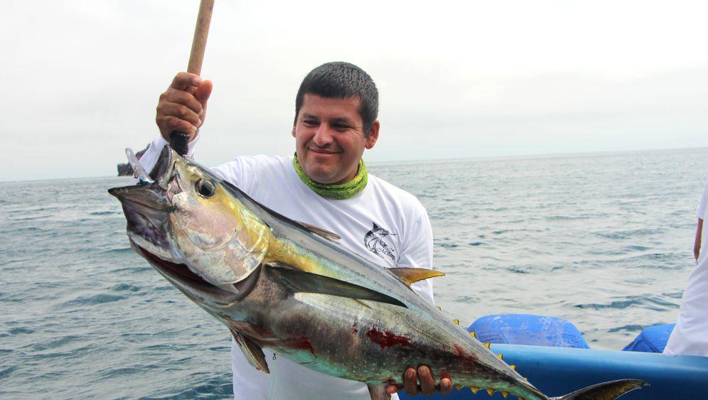 Bootstour vor Galapagos: Aus Liebe zum Meer