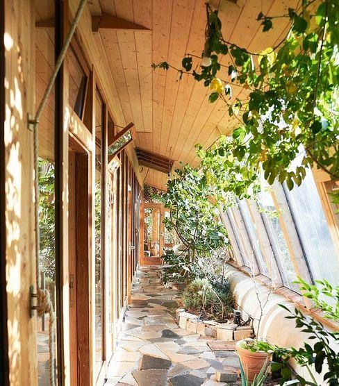 Im Gang wachsen Pflanzen bis zur Decke, einige Fenster sind fast komplett zugewuchert. Mit dem Seil an der Wand öffnen die Bewohner eine Luke im Dach, um zu lüften.