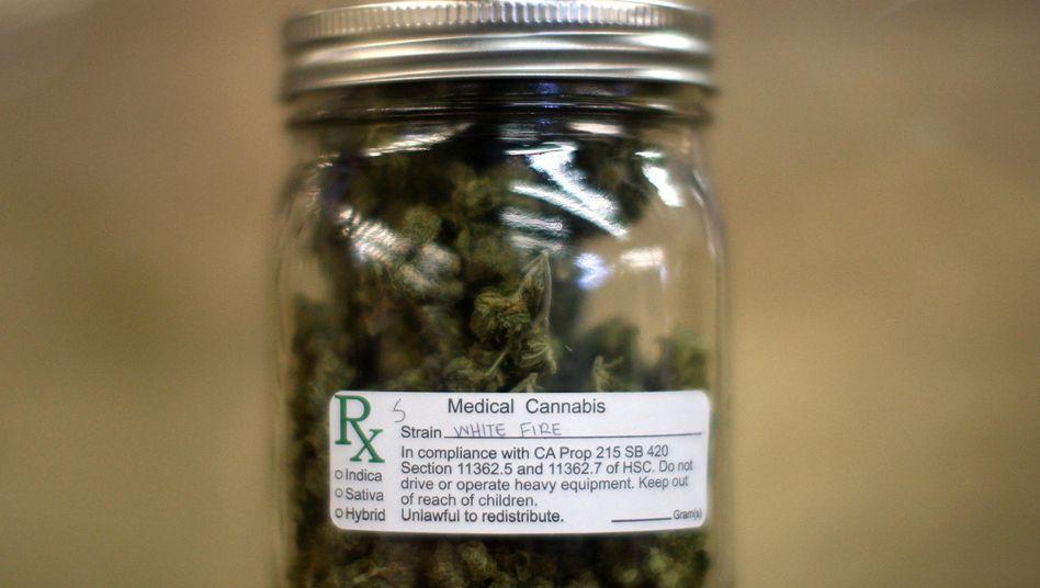 Umstritten: Cannabis als Medizin