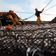 Fischerei mit Grundschleppnetzen genauso klimaschädlich wie Luftverkehr