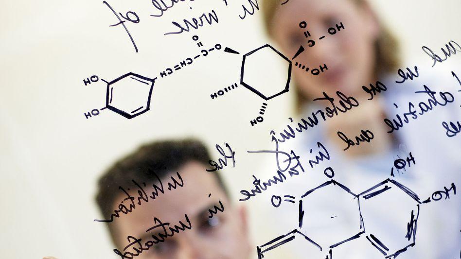 Forscher bei der Arbeit: Wie wird teuer erworbenes Wissen genutzt?