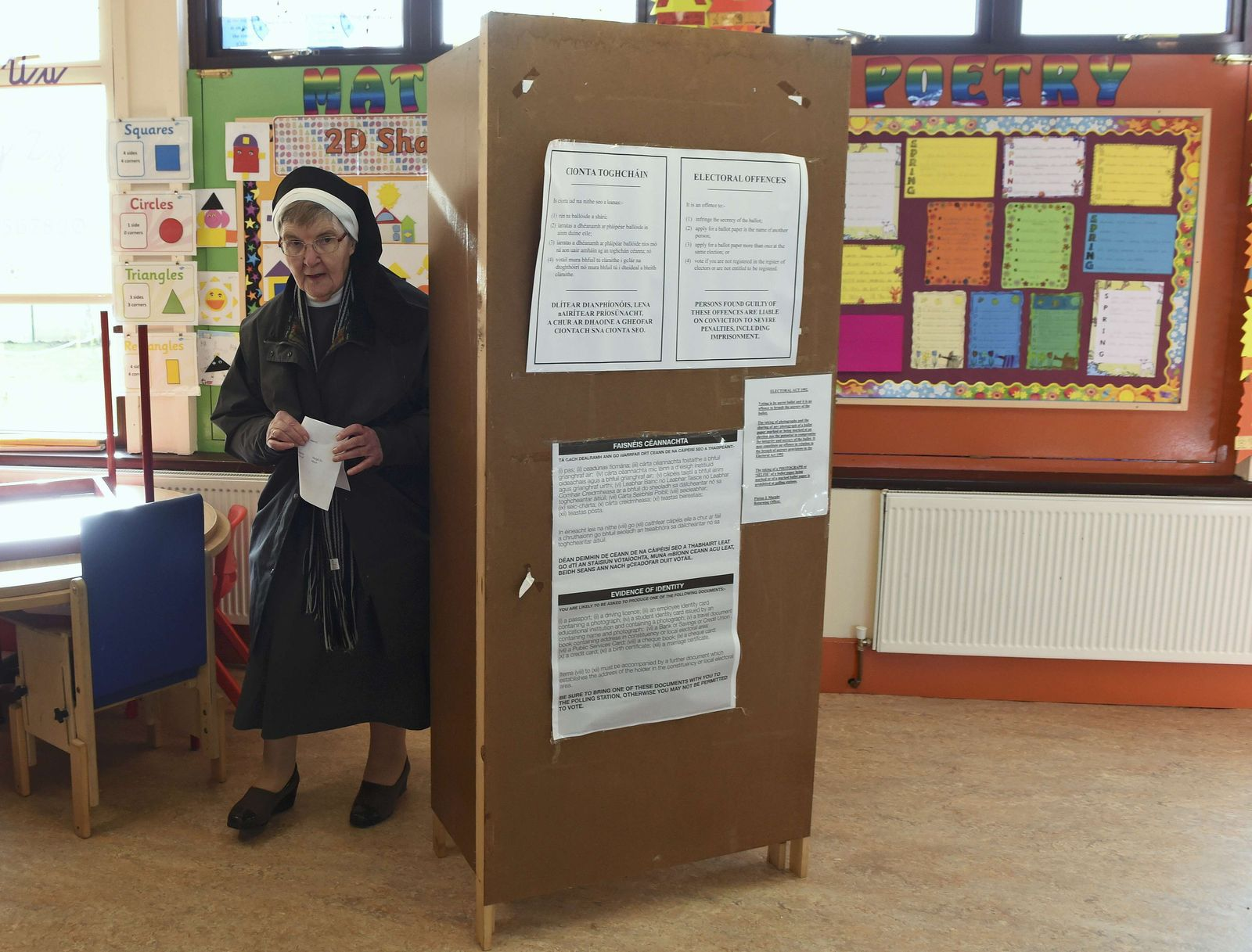 Irland Wahl