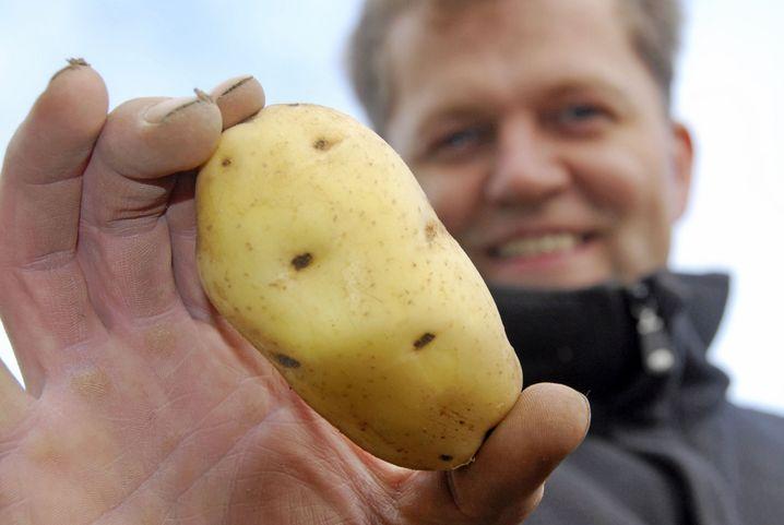 Kartoffel (links)