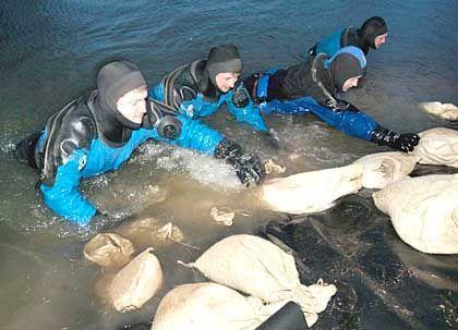 Kampf gegen die Fluten: Polizeitaucher befestigen Folie mit Sandsäcken am durchweichten Damm an der Unstrut bei Leubing