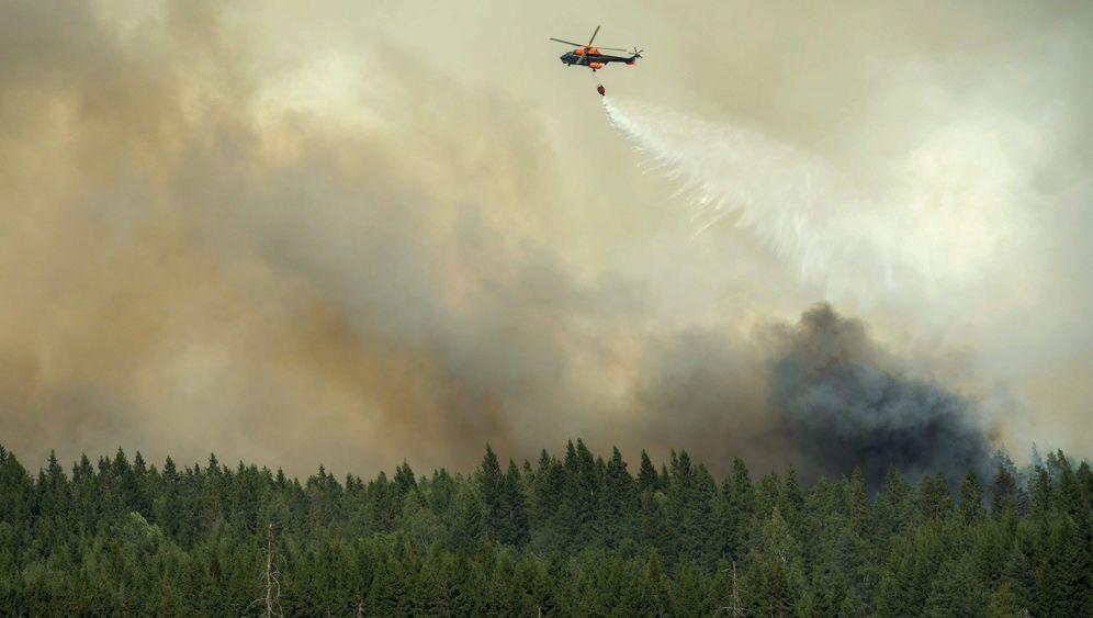Außer Kontrolle: Verheerende Flächenbrände in Schweden