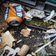 Schottland meldet mehr Drogentote als jedes EU-Land