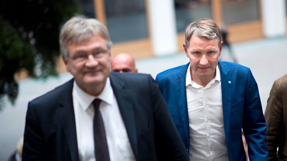 AfD-Politiker Meuthen, Höcke, Gauland (Archivfoto von 2019)