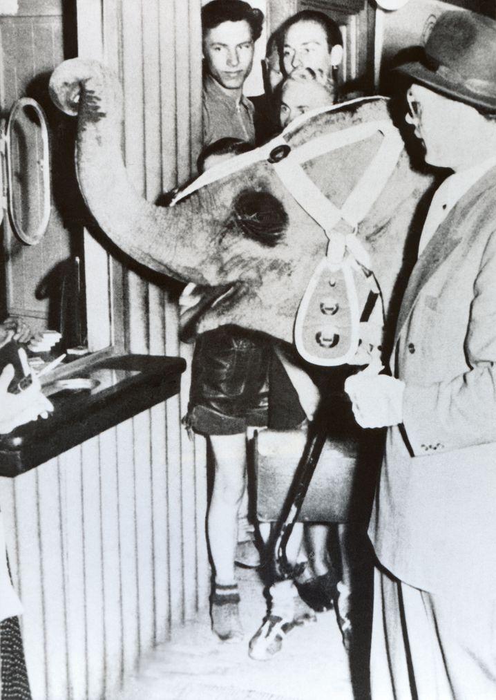 Tuffi am Fahrkartenschalter der Schwebebahn