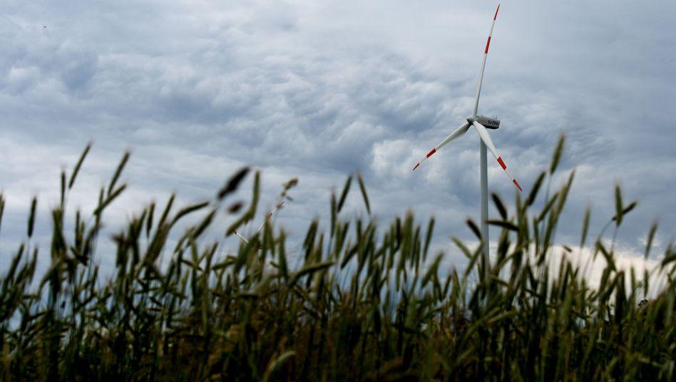 Windrad in Norddeutschland: Künftig nur noch 9 Cent je Kilowattstunde