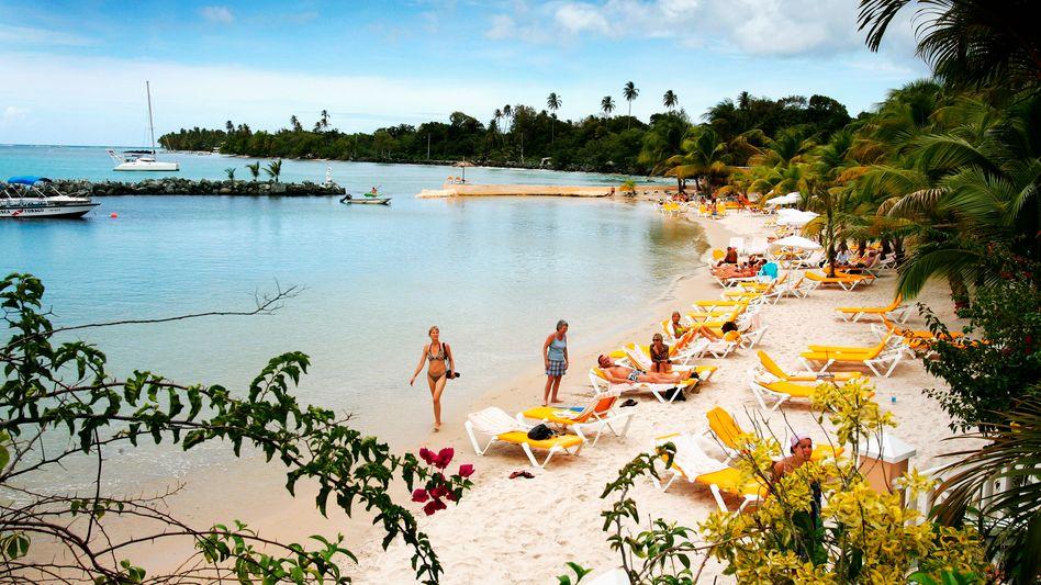 Ab in die Karibik: Zwischen den Anbietern gibt es Preisunterschiede von über 50 Prozent