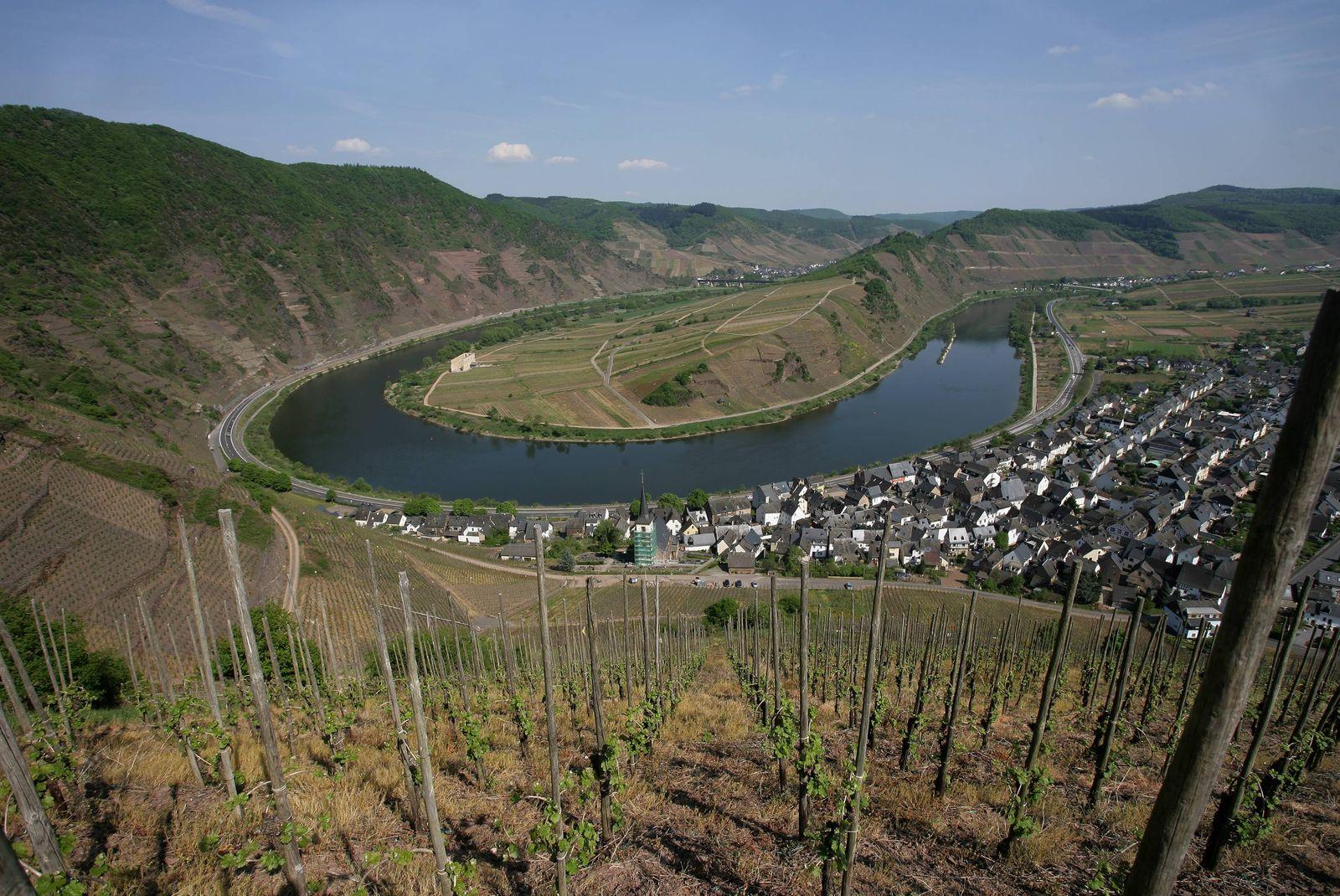 Steilster Weinberg Europas