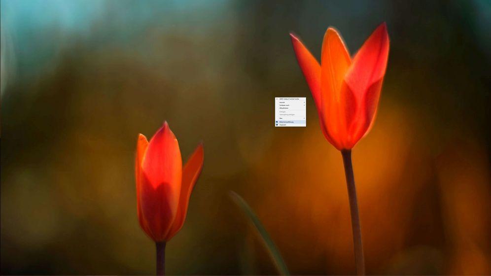 4K-Probleme: Warum Felix Knoke mit seinem neuen Monitor hadert