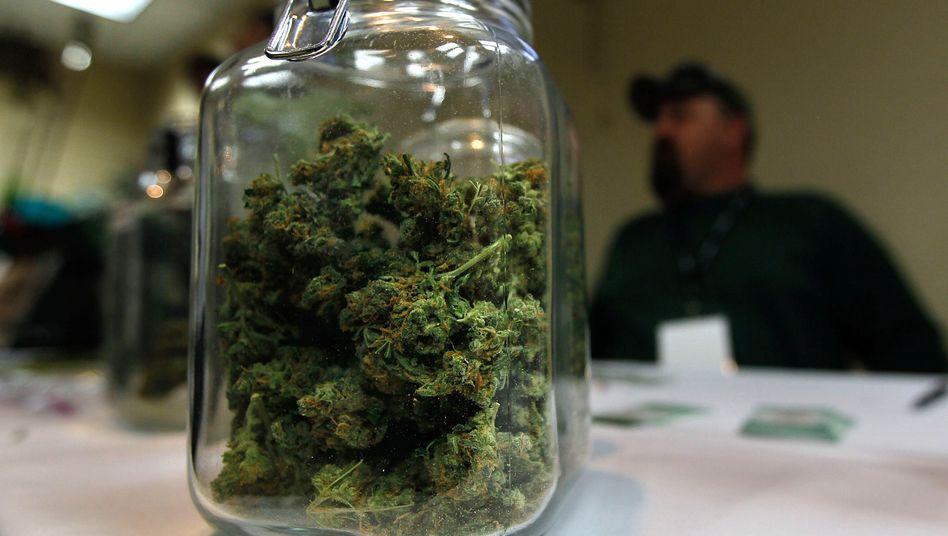 """Cannabis: """"Für einen allgemeinen Einsatz fehlt uns die Datengrundlage"""""""