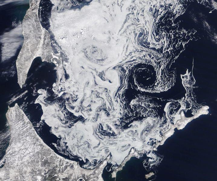 Auch südlich des Polarkreises gibt es Meereis - allerdings sind das nur dünne Eisschichten, die von Strömungen verschoben werden.